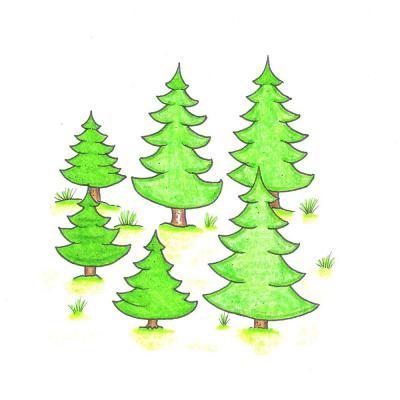 strom_leto